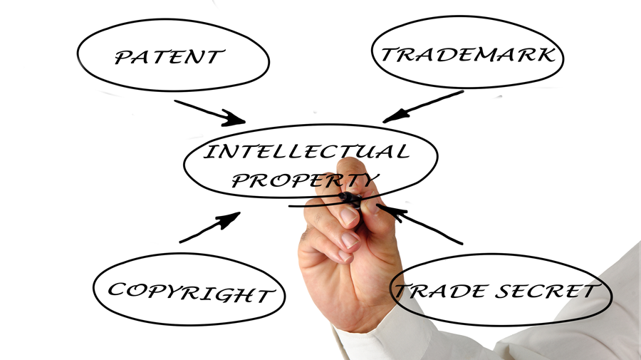LLM in Intellectual Property Law